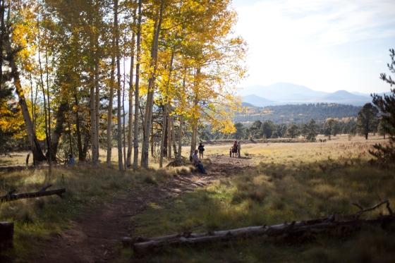 Lockett Meadow, Flagstaff Arizona